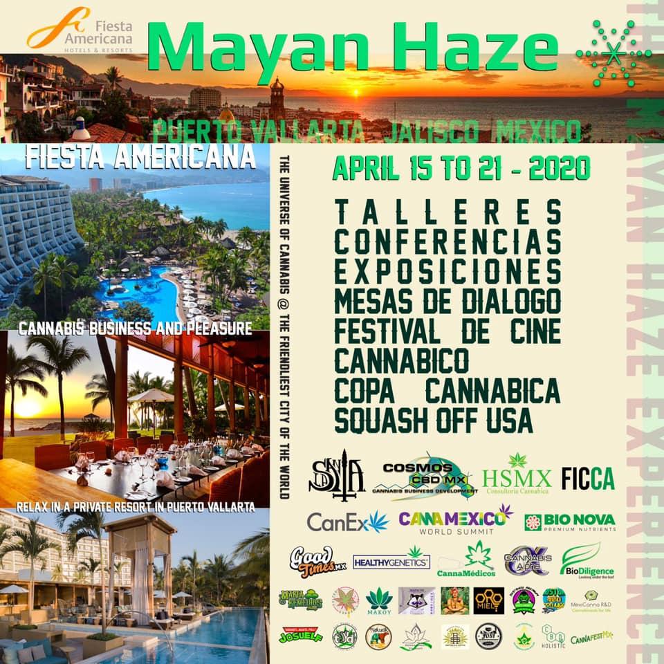 Mayan Haze Cannabis Business and Pleasure