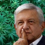 AMLO comenta que si abra Reforma, Cannatlán tu Mercado cannábico de confianza