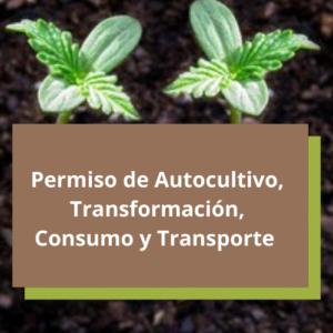 permiso de autocultivo cultivo consumo ante cofepris cannatlan