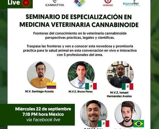 Webinar Medicina veterinaria, cannatlan
