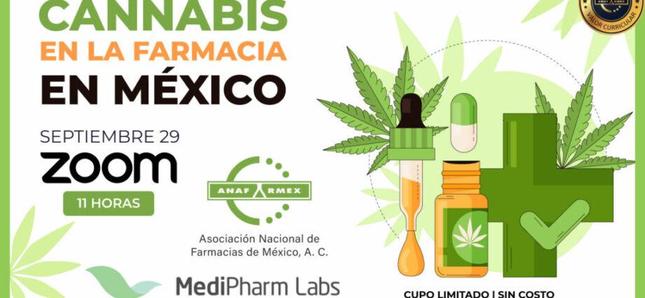 Webinar Cannabis en la Farmacia en México, Zoom cannatlan