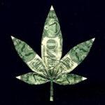 ¿Cuánto cuesta cultivar cannabis en México?