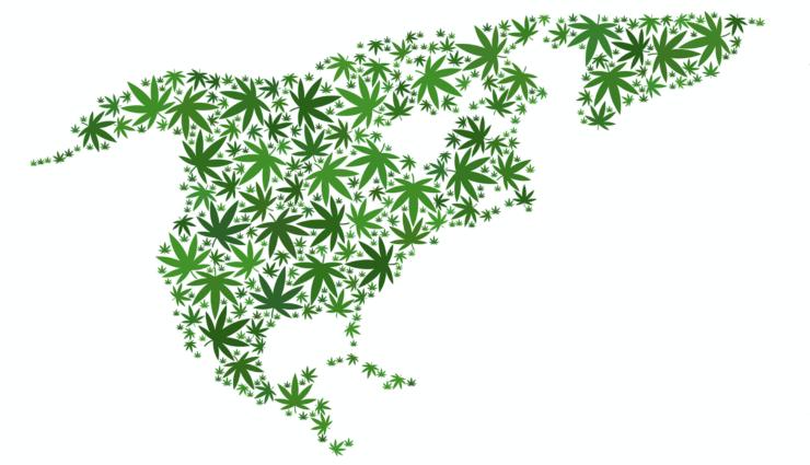 legalización de marihuana recreativa en California y México cannatlan