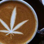 CBD y Café: La nueva forma de consumir CBD